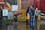 Вологда, пикет против цирков с животными