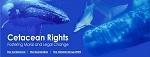 Декларация прав китообразных: китов и дельфинов