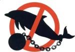 60                      дельфинариев были закрыты в мире под давлением общественности,                      14 из них - на стадии строительства