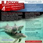Волгоград                      - за освобождение дельфинов