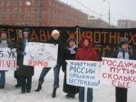 Пикет по делу об убийстве Рыжика. 25 декабря