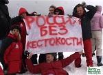В России<br> запрещена охота<br> на детенышей <br>гренландских тюленей