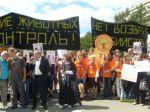 Митинг в защиту бездомных животных с участием Макаревича, Антонова, Градского, Камбуровой и др.
