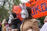 >Международный день против экспериментов на животных