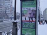 Этичная реклама в Сибири