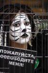 Акция «За цирк без жестокости»!