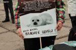 Марш против жестокости к животным в Магнитогорске