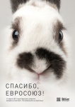 Не тестировано на животных