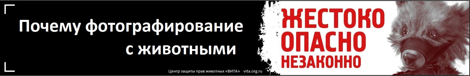 Впервые в России! Социальная реклама против фотобизнеса                с животными в метро и на улицах Санкт-Петербурга - Сентябрь 2014
