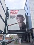 Первая                      в России социальная реклама против фотобизнеса с животными                      - в метро и на улицах Санкт-Петербурга
