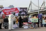 19 октября Всероссийская акция «Животные – не одежда!»