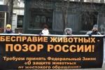 Жители Челябинска вступились за права животных