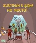 Защитники животных Петербурга встретят дрессировщиков Запашных