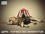Цирк - ад животных - 79.jpg