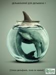 Верни дельфину море