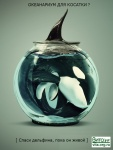 Океанариум - не для косаток