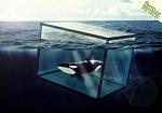 О «священной корове» «Москвариуме», неправовых методах и китовой тюрьме