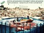 Зритель дельфинария<br> оплачивает бойню дельфинов