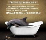 Спаси дельфина, пока он живой