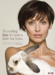 Голливуд                      запретил продажу меха животных