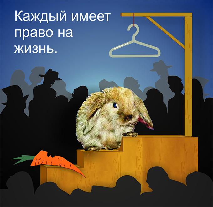http://www.vita.org.ru/fur/daf_2008/images/isakova_m.jpg