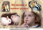 andrejanova_v.jpg
