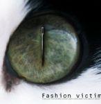 Жертвы                      моды