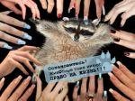Дизайн против мехов - 2009: опубликованы все работы конкурса, жюри начинает работу