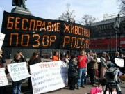 >Причины эскалации жестокости в России