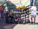 пикет в защиту животных в Архангельске