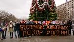 Россия против жестокости и безнаказанности живодеров и бездействия                       властей