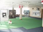 Выставка Илоны Гонсовской