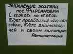 Власти Московской области приступили к очередному отстрелу                собак