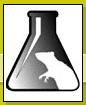 Международная ассоциация                     против болезненных экспериментов на животных