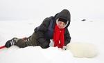 """В защиту детёнышей тюленя: """"звёздный"""" десант               на Белое море"""