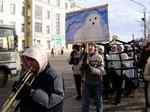 """В защиту детёнышей тюленя: """"звёздный"""" десант                 на Белом море"""