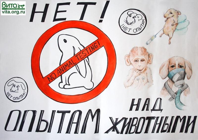 http://www.vita.org.ru/new/2010/apr/v01b.jpg