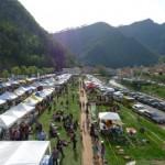 Международный веганский фестиваль VeganFest в Италии ещё более грандиозный и незабываемый!