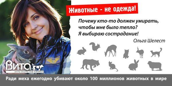 Ольга Шелест: