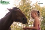 2014 – Год Лошади. Любите лошадей – откажитесь от копчёных                      колбас!