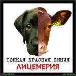 10                      декабря - Всемирный день прав животных! С Праздником!