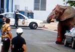 2014 год объявлен годом запрета цирка с животными в                Германии. Немецкое такси - в защиту животных