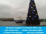 Победа!                      В Санкт-Петербурге запрещена деятельность передвижного дельфинария
