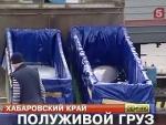Транспортировка<br>дельфинов<br> из Владивостока<br>в Сочи