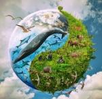 Международный                      день защиты животных. Защита прав животных. Глобальность в                      противовес локальности