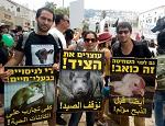 Евреи и арабы объединились вместе за веганство и права животных