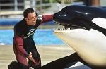 >Бывший дрессировщик косаток призвал прекратить жестокие шоу с животными в океанариумах