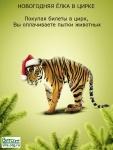 Россия без жестокости: без цирка с животными