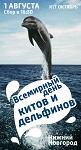 1 августа - акция нижегородских зелёных в защиту морских млекопитающих