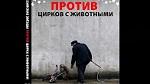 Российские звёзды против цирка с животными (короткий вариант)  ВИДЕО